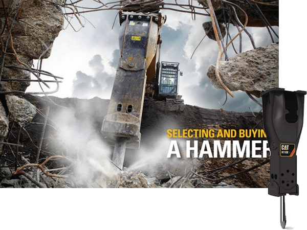 Cat Hammer